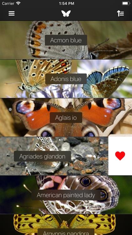 Butterflies 2.0 screenshot-5