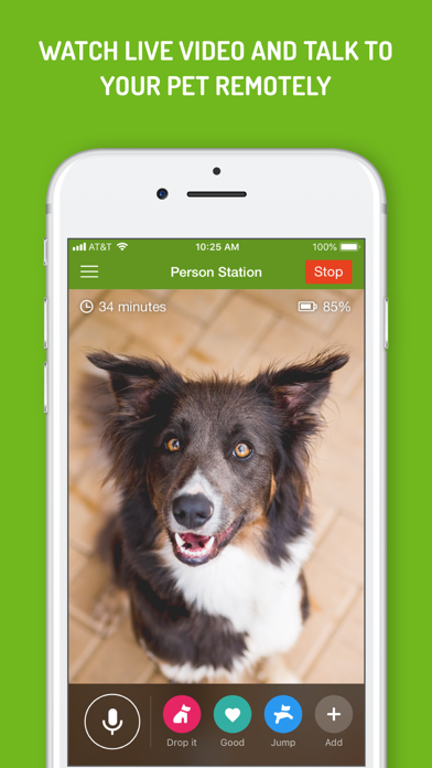 Dog Monitorのおすすめ画像4
