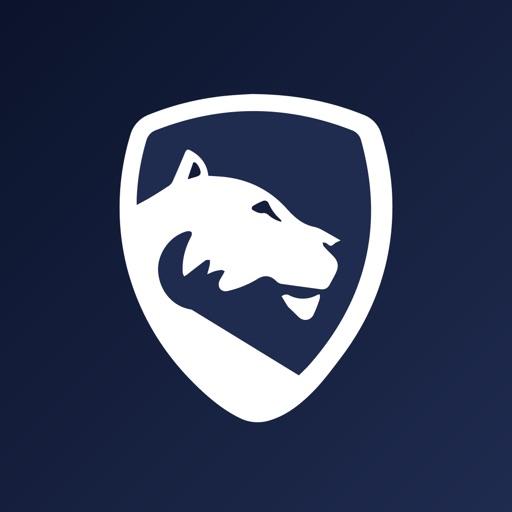 LionGuard Insta AdBlock