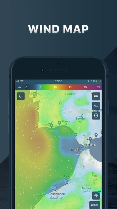 Windy: wind & waves forecast Screenshot
