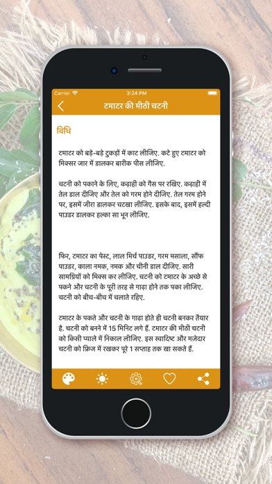 Chutney Recipes - Hindi screenshot 3