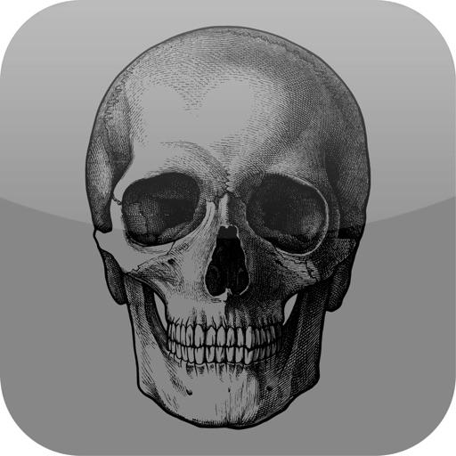 Daily Death icon