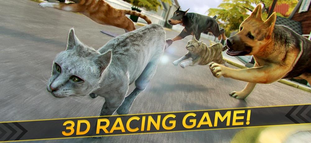 My Kitten Cat Race: Animal Run Cheat Codes