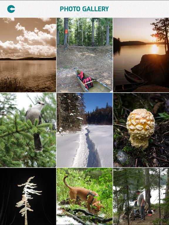 Algonquin Provincial Park screenshot 9