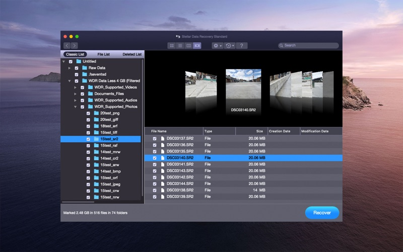 Stellar Data Recovery скриншот программы 4