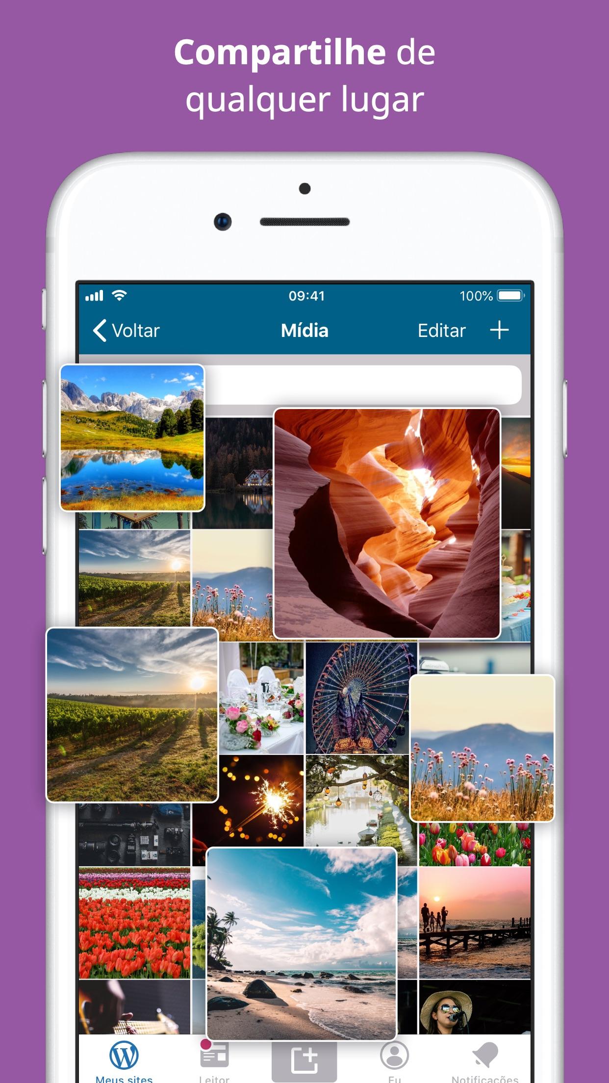 Screenshot do app WordPress