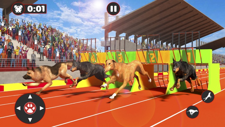 My Virtual Pet Dog Race 2019