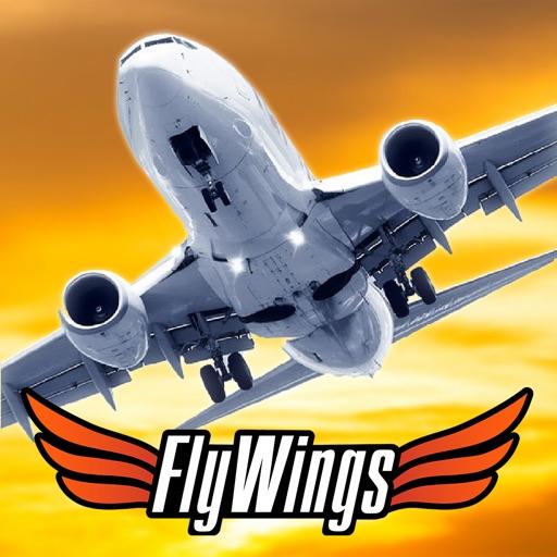 Flight Simulator FlyWings 2013