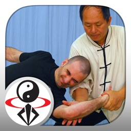 Tai Chi Martial Applications
