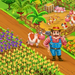 Farm Village City Market