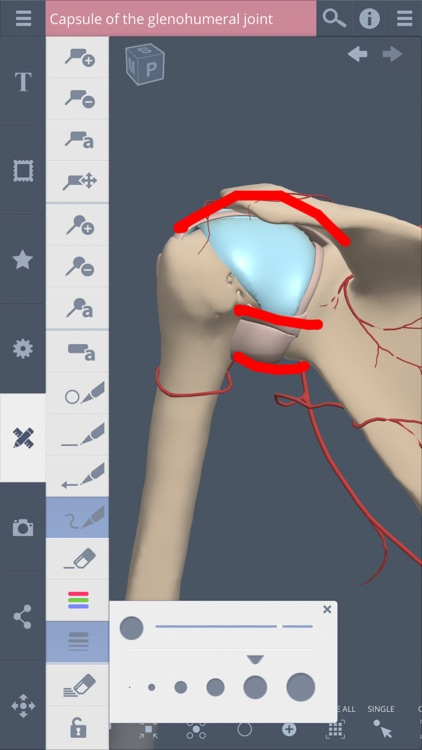 Shoulder: 3D Real-time screenshot-4