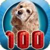 100只动物的照片和声音