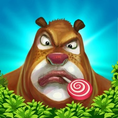 Activities of Forest Bear Run