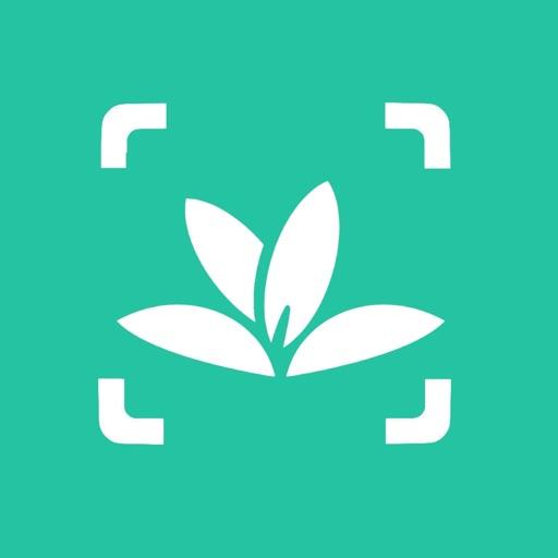 Идентификация растений