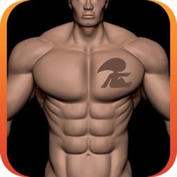 Aesthetic Body