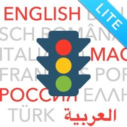 Führerschein multilingual 2019