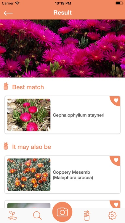 PlantDetect - Plant Identifier screenshot-5