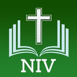 NIV Bible The Holy Version゜