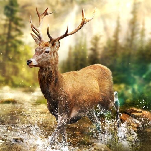 Hunting Clash: 動物シューティングゲーム 3D