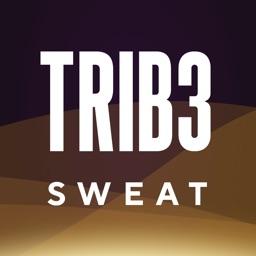 TRIB3 SWEAT