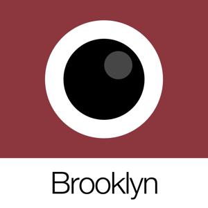 Analog Brooklyn app