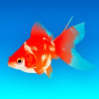 Goldfish - Aquarium Fish Tank Hack Resources Generator