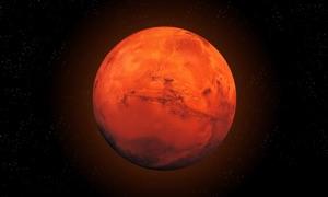 Mars Info