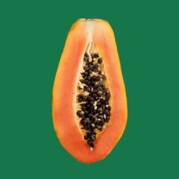The Papaya Collective