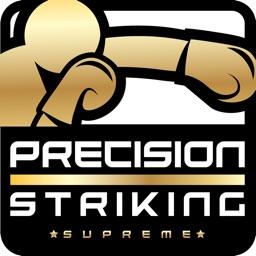 Precision Boxing Coach Pro