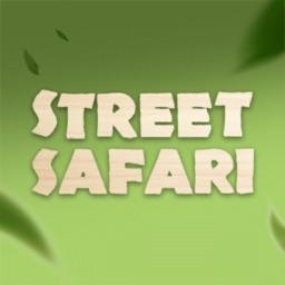 Street Safari