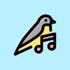 Rafael Francisco - Bird Sound Identifier artwork