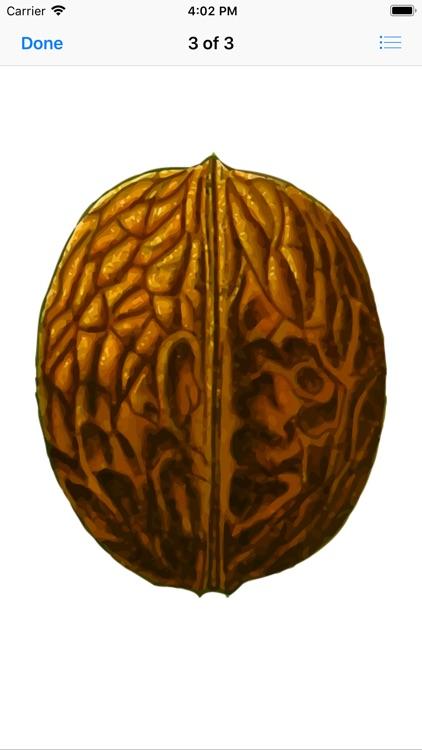 Walnut Stickers