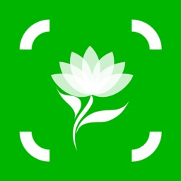 Plant Identification & Info