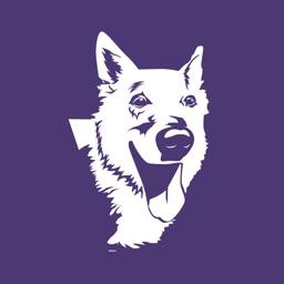 PetCation Pet Services