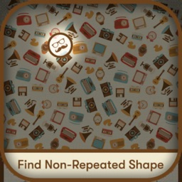 Find Out Non Repeated Objects