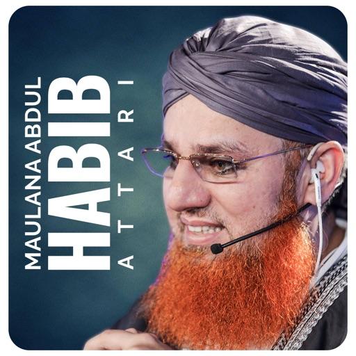 Maulana Abdul Habib