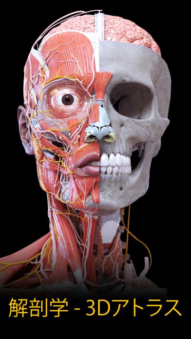解剖学 - 3Dアトラス ScreenShot0