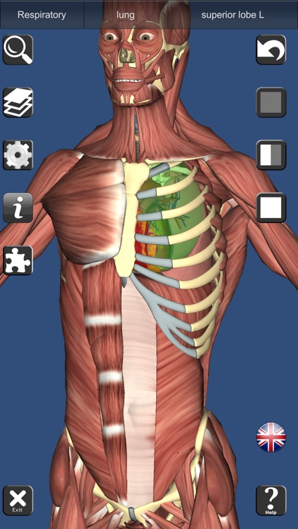3D Anatomy Learning screenshot-9