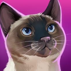 CatHotel - Refugio para gatos