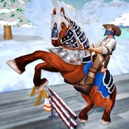 My Horse Buggy Transportation