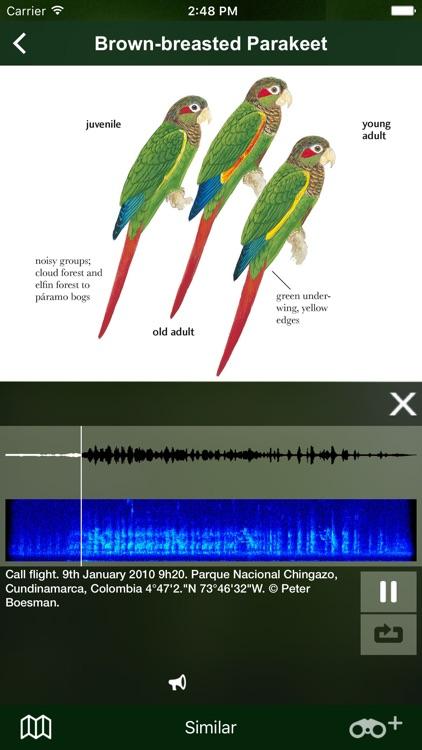 All Birds Colombia field guide screenshot-6