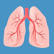 Activities of Pulmonology Medical Terms Quiz