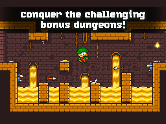 Super Dangerous Dungeons-ipad-5