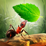 Little Ant Colony - Idle Game pour pc
