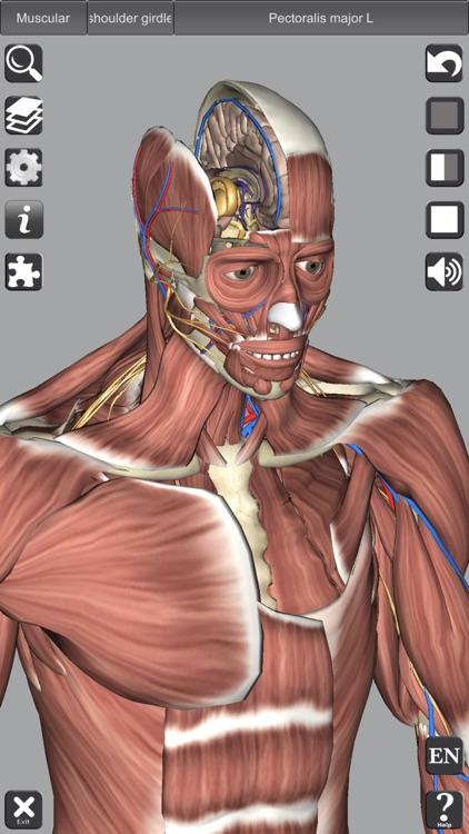 3D Anatomy screenshot-8