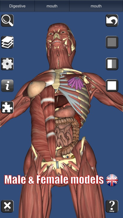 3D Anatomy Learning screenshot-6