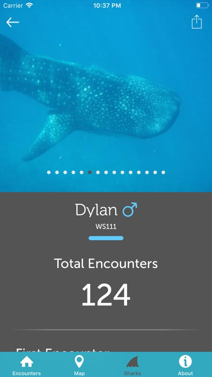 Whale Shark Network Maldives screenshot-6