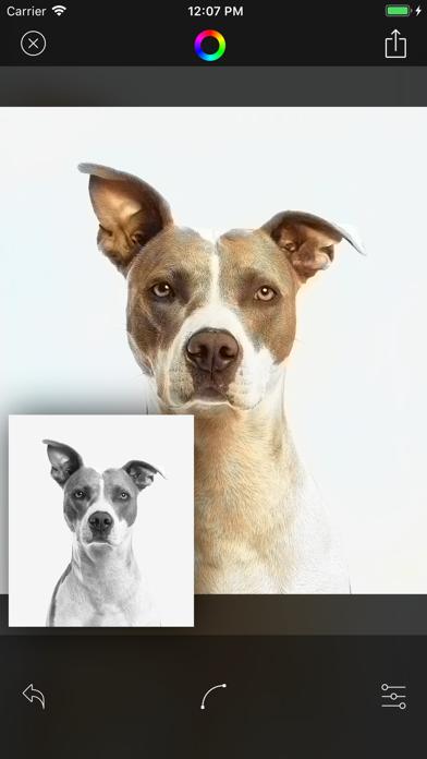 Deep Color - AIを利用した自動カラーのおすすめ画像4