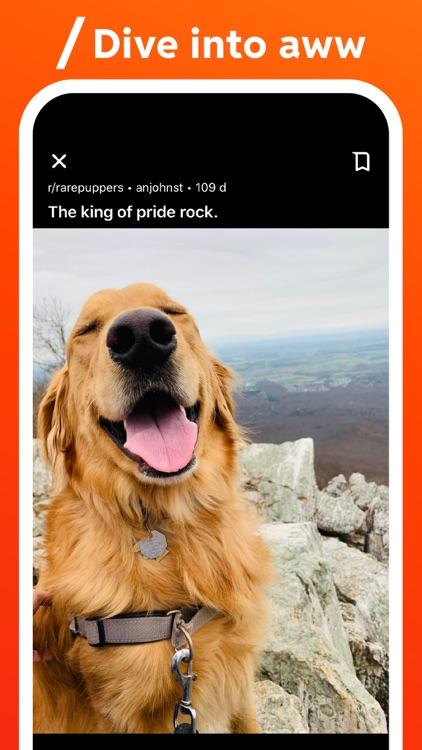 Reddit screenshot-4