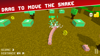 Snake Road 3D: Hit Color Block Screenshot on iOS